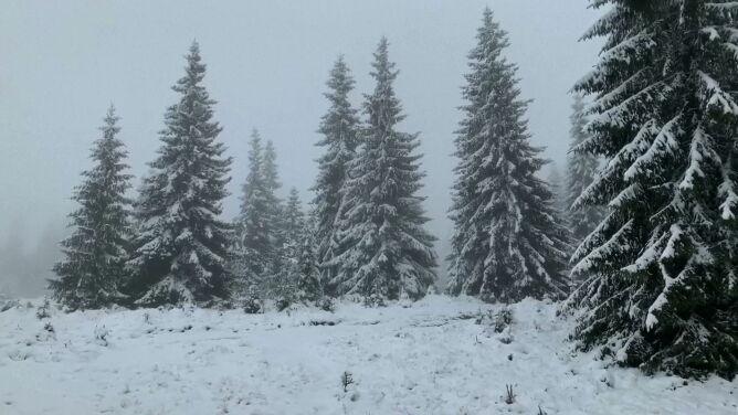 Zima zaatakowała. Termometry pokazały osiem stopni mrozu